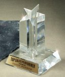 Star Acrylic Award Clear Acrylic Trophies