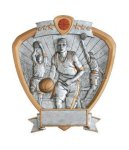 Signature Series Basketball Shield Awards Basketball Trophies