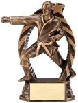 Bronze and Gold Karate, Male Award Martial Arts Trophies