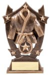 Stars Karate Trophy Martial Arts Trophies