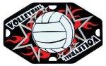 Volleyball Street Tags Volleyball Medals