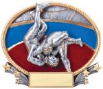 Wrestling 3D Oval Trophy (Male) Wrestling
